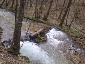 potok bregana