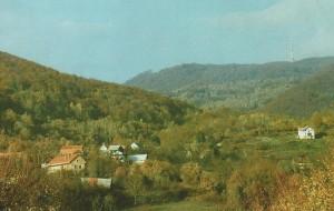bulić-i-sek-1024x649