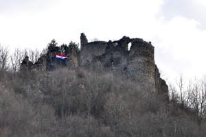 iznad-teksta_Borovščaka